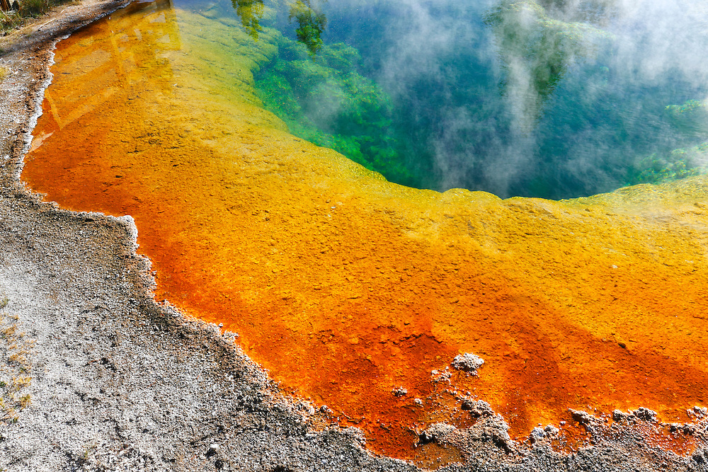 Fuente termal Morning Glory en Upper Geyser Basin, Yellowstone NP, Wyoming (Estados Unidos)