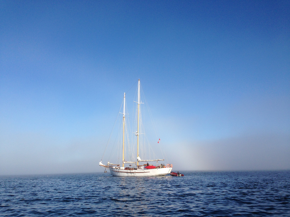 Approaching SV Maple Leaf Under Fog Bow from Port of Sidney, Sidney, British Columbia, Canada