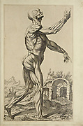 """Male full body side view woodcut print at the opening of the Human Anatomy book """"Notomie di Titiano"""" Printed in Italy in 1670"""