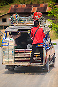 09 MARCH 2013 - ALONG HIGHWAY 13, LAOS:  A man in the back of a songthaew (pickup truck converted to bus) on Highway 13 in the province of Vientiane in Laos. The paving of Highway 13 from Vientiane to near the Chinese border has changed the way of life in rural Laos. Villagers near Luang Prabang used to have to take unreliable boats that took three hours round trip to get from the homes to the tourist center of Luang Prabang, now they take a 40 minute round trip bus ride. North of Luang Prabang, paving the highway has been an opportunity for China to use Laos as a transshipping point. Chinese merchandise now goes through Laos to Thailand where it's put on Thai trains and taken to the deep water port east of Bangkok. The Chinese have also expanded their economic empire into Laos. Chinese hotels and businesses are common in northern Laos and in some cities, like Oudomxay, are now up to 40% percent. As the roads are paved, more people move away from their traditional homes in the mountains of Laos and crowd the side of the road living off tourists' and truck drivers.    PHOTO BY JACK KURTZ