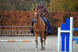 Lejeune Philippe (BEL) - Vigo d'Arsouilles<br /> Stal Lejeune - Lennik 2010<br /> © Dirk Caremans