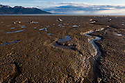 Intertidal mudflats in Turnagain Arm, Chugach State Park, Alaska.