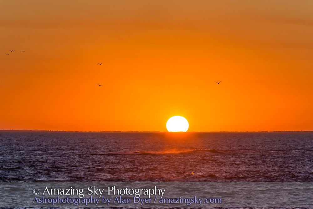 The setting Sun at Warrnambool, Victoria, Australia, on April 13, 2017. The seagulls are real - I did not cut and past them in.<br /> <br /> With the Canon 6D and 200mm lens and 1.4x Extender. This is a single exposure, not HDR, taken as part of a movie sequence.