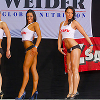 Miss Zsaru (Miss Cop) contest in Budapest, Hungary on May 13, 2012. ATTILA VOLGYI