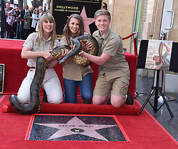 Robert Irwin, Terri Irwin, Bindi Irwin and Wes Mannion attends Steve Irwin's posthumous Hollywood Walk of Fame star ceremony on April 26, 2018 in Hollywood, CA. ©Tammie Arroyo / AFF-USA.com. 26 Apr 2018 Pictured: Terri Irwin, Bindi Irwin and Robert Irwin. Photo credit: Tammie Arroyo / AFF-USA.com / MEGA TheMegaAgency.com +1 888 505 6342