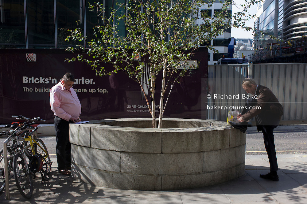 Two businessmen stop at an urban tree, one to tie his shoelace and another to read some notes.