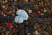 Heart shaped rusting enameled grave in the Lagrasse cemetry for Pierre Bourdell, who died in 1914 at the age of 69, 27th December 2016, Lagrasse France.