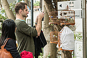 Tourists take photos of Chinese songbirds at the Yuen Po Street Bird Garden in Mong Kok, Kowloon, Hong Kong.