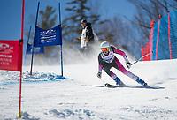 Francis Piche Invitational U14 ladies second run with Gunstock Ski Club.  <br /> ©2017 Karen Bobotas Photographer