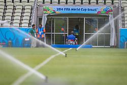 Preparação do gramado para a partida entre Brasil x México, válida pela segunda rodada do grupo A da Copa do Mundo 2014, no estádio Castelão em Fortaleza, Ceará. FOTO: Jefferson Bernardes/ Agência Preview