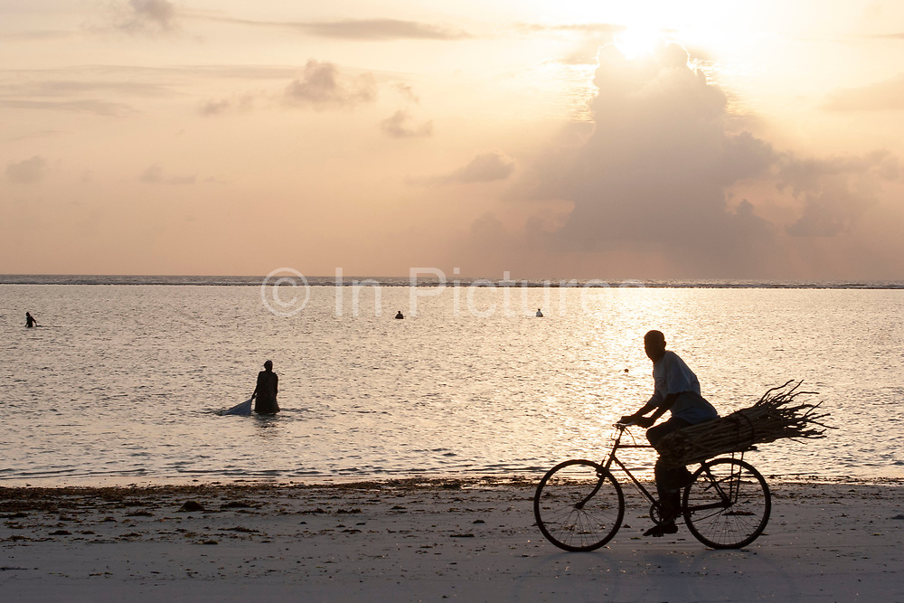A bicycle is a common sight on Zanzibars beaches, as it is a quicker and flatter surface than the local roads on 10th December 2008 in Zanzibar, Tanzania. Here on Matemwe Beach a man cycles along carrying his load of fire wood at sunset. Zanzibar is a small island just off the coast of the Tanzanian mainland in the Indian Ocean. In part due to its name, Zanzibar is a travel destination of mystical reputation, known for its incredible sealife on its many reefs, the powder white coral sand beaches and the traditional cultivation of spices.