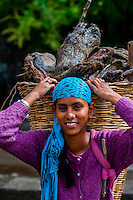 A young woman carrying a load of wood in a basket, Leh-Manali Highway, Himachal Pradesh, India.