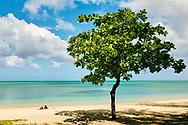 Isla Mauricio. Mauritius