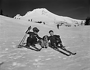 """ackroyd 00083-260. """"Timberline Lodge. Skiers and children. February 8, 1947"""" Family skiing on Mt. Hood."""