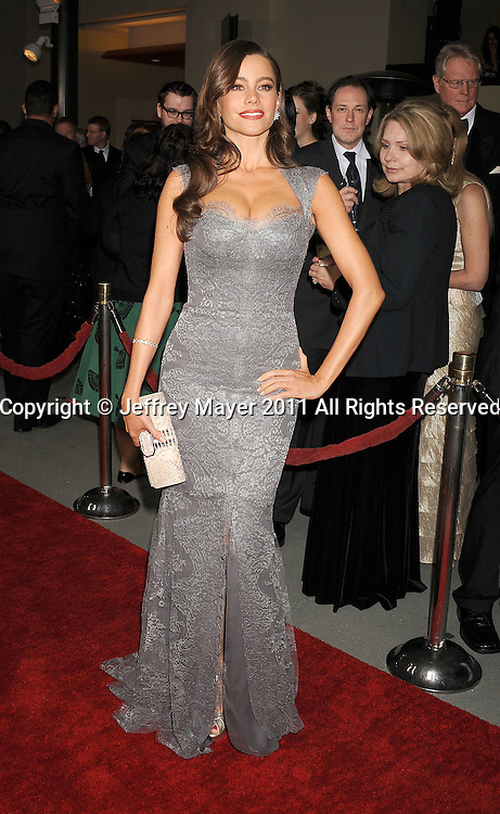 HOLLYWOOD, CA - January 29: Sofía Vergara arrives at the 63rd Annual DGA Awards held at the Grand Ballroom at Hollywood & Highland Center on January 29, 2011 in Hollywood, California.
