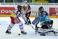 15.03.2011, Rapperswil-Jona, Eishockey NLA Playout, Rapperswil-Jona Lakers - HC Ambri-Piotta, Trevor Meier (AMB) gegen Daniel Manzato (LAK)  (Thomas Oswald/hockeypics)