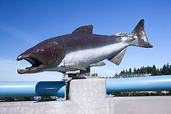 North America, United States, Washington, Bellevue, salmon sculpture at bus stop