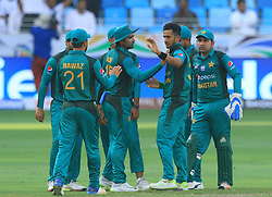 September 16, 2018 - Dubai, United Arab Emirates - Pakistan cricketer Hasan Ali celebrates with his team members after taking a wicket  during the 2nd cricket match of Asia Cup 2018 between Pakistan  and Hong Kong in Dubai, United Arab Emirates, on September 16, 2018  (Credit Image: © Tharaka Basnayaka/NurPhoto/ZUMA Press)