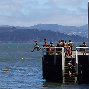Youngsters jump into the sea from the wharf in Days Bay, Eastbourne. New Zealand...Eastbourne, New Zealand. An outer suburb, it is situated on the eastern shore of Wellington Harbour, 5 kilometres south of the main Lower Hutt urban area, and directly across the harbour from the Miramar Peninsula in Wellington city. It is reached from Lower Hutt by a narrow exposed coastal road via the industrial suburb of Seaview. It comprises some 2000 residential homes spread over the seven main small bays of Point Howard, Lowry Bay, York Bay, Mahina Bay, Days Bay, Rona Bay and Robinsons Bay, although only the last two are commonly considered part of Eastbourne itself. There are also two smaller bays; Sunshine Bay and Sorrento Bay. Eastbourne, New Zealand.  25th January 2011. Photo Tim Clayton.
