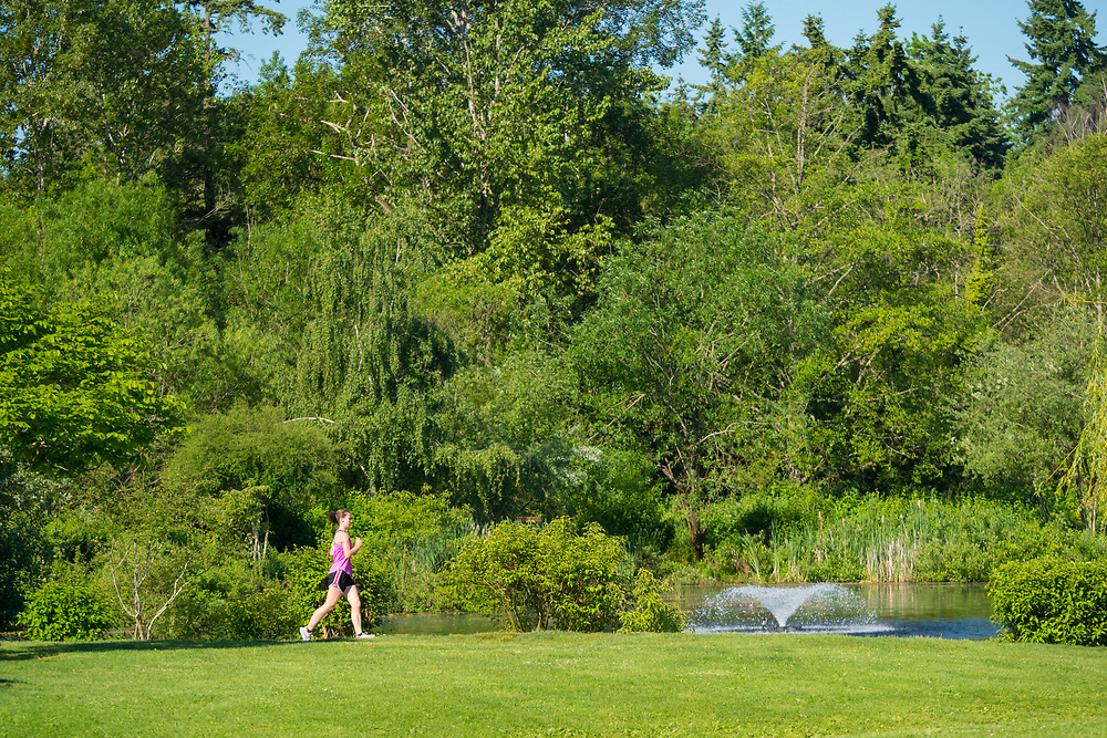United States, Washington, Bellevue. Jogger in park. Editorial Use Only.