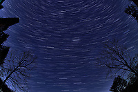 Winter Nighttime Sky Over New Jersey. Composite star trail image (04:00-04:29) taken with a Nikon D850 camera and 8-15 mm fisheye lens (ISO 800, 15 mm, f/8, 30 sec). Raw images processed with Capture One Pro and the composite created with Photoshop CC (statistics, maximum).