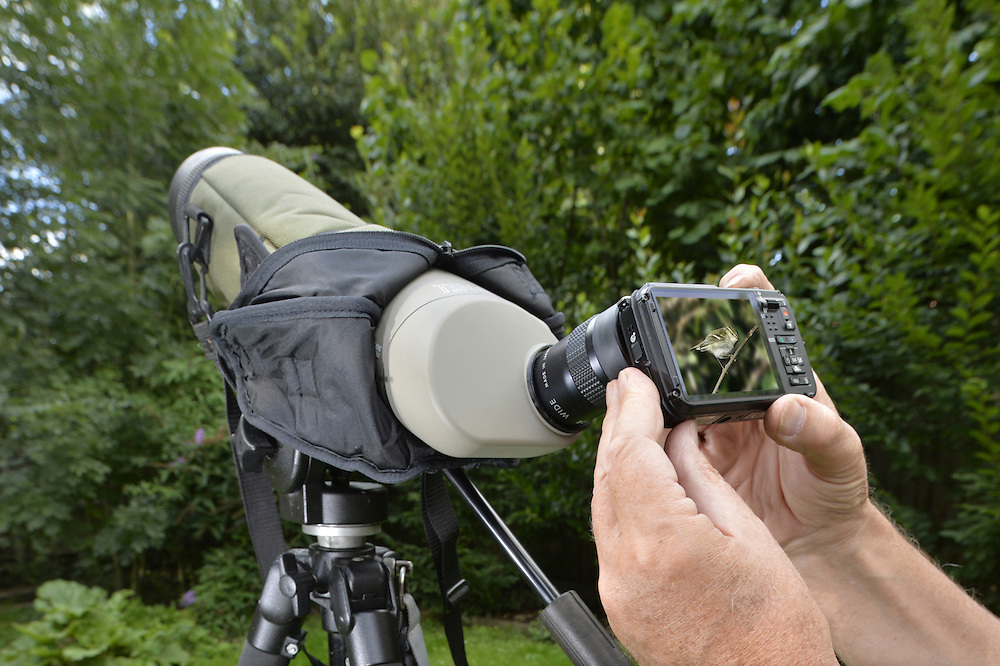 Digiscoping - taking a digital picture through a birder's scope