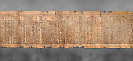 """Ancient Egyptian Book of the Dead papyrus - Spell 81a assuming the form of a lotus associated with the sun god, Iufankh's Book of the Dead, Ptolemaic period (332-30BC).Turin Egyptian Museum. Grey Background<br /> <br /> The spell reads """" I am a pure lotus that has ascended by the Sinlight and ia at Ra's nose. I spend my time shedding it on Horus. I am the pure lotus that ascended from the field"""". <br /> <br /> The translation of  Iuefankh's Book of the Dead papyrus by Richard Lepsius marked a truning point in the studies of ancient Egyptian funereal studies. .<br /> <br /> If you prefer to buy from our ALAMY PHOTO LIBRARY  Collection visit : https://www.alamy.com/portfolio/paul-williams-funkystock/ancient-egyptian-art-artefacts.html  . Type -   Turin   - into the LOWER SEARCH WITHIN GALLERY box. Refine search by adding background colour, subject etc<br /> <br /> Visit our ANCIENT WORLD PHOTO COLLECTIONS for more photos to download or buy as wall art prints https://funkystock.photoshelter.com/gallery-collection/Ancient-World-Art-Antiquities-Historic-Sites-Pictures-Images-of/C00006u26yqSkDOM"""