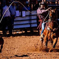 Calf roper Jaxson Mirabal slings a rope onto his calf during the High School Finals rodeo Friday at Red Rock Park in Gallup.
