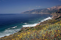 4 August 2006: Scenic view looking North along Highway 1 through central California along the coast of Big Sur.  Blue sky, surf, yellow weeds and rolling hills.