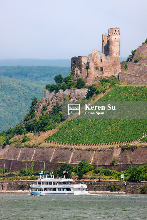 Castle ruins Ehrenfels above river Rhine, Upper Middle Rhine Valley (UNESCO World Heritage site), Assmanns-hausen, Germany