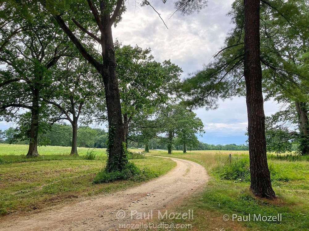 Road at Appleton Farms & Grass Rides