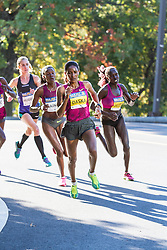Boston Athletic Association Half Marathon,  Mamitu Daska