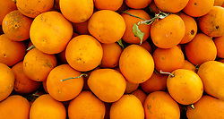 Oranges for sale at a market stall in Tinghir, southerm Morocco<br /> <br /> (c) Andrew Wilson | Edinburgh Elite media
