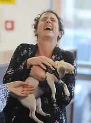Mairi Gougeon MSP with Bella the Pug<br /> <br /> (c) David Wardle | Edinburgh Elite media