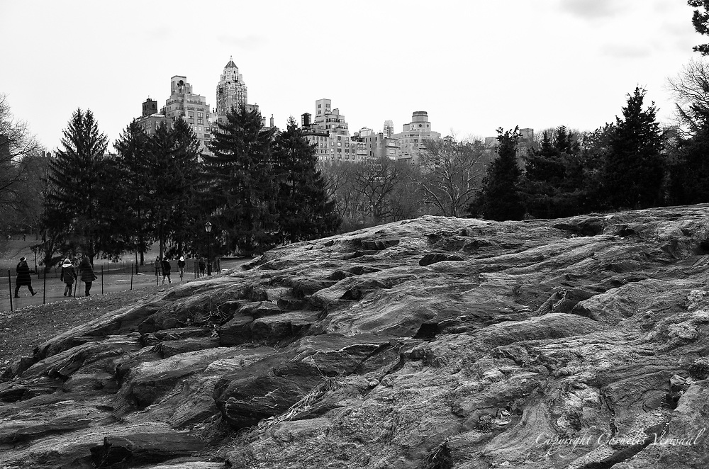 A volcanic rocky outcropping on Cedar Hill in Central Park, New York City.