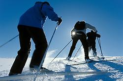 Crosscountry skiers, Golå/ Norway.<br /> Released.