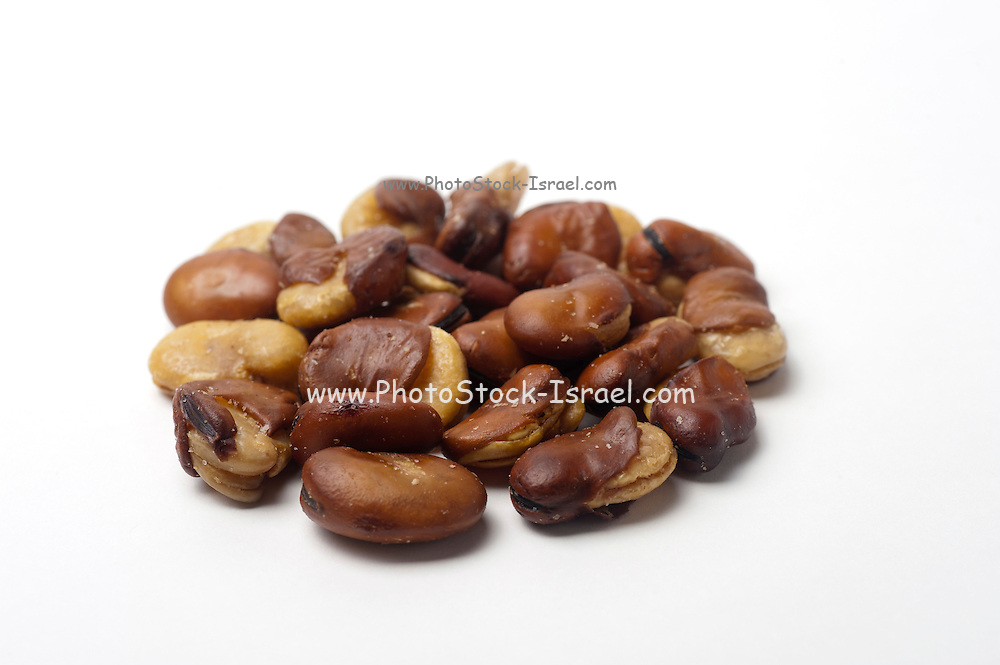 Roasted Broad Bean (Vicia faba) On white Background