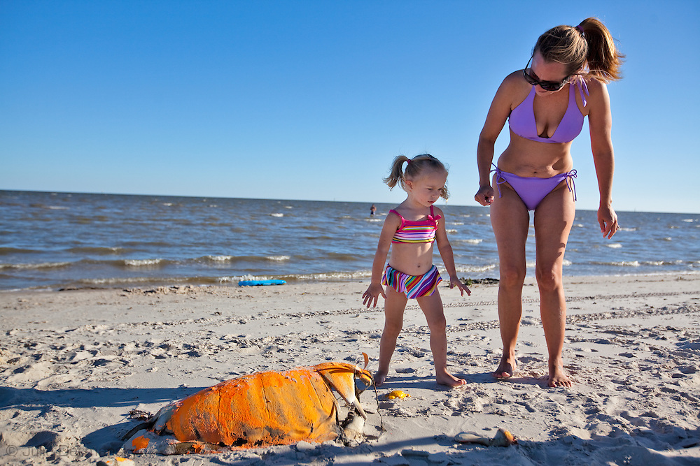 Mother and daughter on the beach on Pass Christian check out a dead sea turtle on the beach. An unprecedented number of dead young  Kemp's Ridley and Loggerhead  sea turtles have washed up on the shores of Mississippi along the Gulf of Mexico starting almost a year after the BP oil spill. <br /> Test are being done on the high number of turtle and dolphin corpses found on the beaches but results have not been released.
