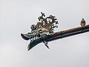 Rynna na katedrze wawelskiej, Kraków, Poland<br /> Gutter on Wawel Cathedral, Cracow, Poland