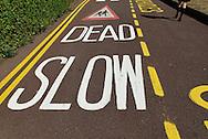 Traffic Calming Measures - 2010