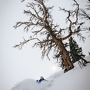 Tanner Flanagan skis backcountry powder during a winter storm in the Tetons near Jackson Hole Mountain Resort in Teton Village, Wyoming.