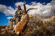 Spain Ibex hunt
