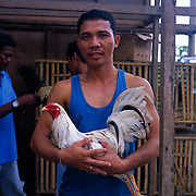 THE PHILIPPINES (Boracay). 2009. Brendo Bersabal with his game cock before the cockfighting at the Boracay Cockpit,  Boracay Island. Photo Tim Clayton <br /> <br /> Cockfighting, or Sabong as it is know in the Philippines is big business, a multi billion dollar industry, overshadowing Basketball as the number one sport in the country. It is estimated over 5 million Roosters will fight in the smalltime pits and full-blown arenas in a calendar year. TV stations are devoted to the sport where fights can be seen every night of the week while The Philippine economy benefits by more than $1 billion a year from breeding farms employment, selling feed and drugs and of course betting on the fights...As one of the worlds oldest spectator sports dating back 6000 years in Persia (now Iran) and first mentioned in fourth century Greek Texts. It is still practiced in many countries today, particularly in south and Central America and parts of Asia. Cockfighting is now illegal in the USA after Louisiana becoming the final state to outlaw cockfighting in August this year. This has led to an influx of American breeders into the Philippines with these breeders supplying most of the best fighting cocks, with prices for quality blood lines selling from PHP 8000 pesos (US $160) to as high as PHP 120,000 Pesos (US $2400)..