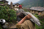 A man carries a stone slab on his shoulder into Landruk, Annapurna Himalaya, Nepal as part of an initiative by the local committee to renovate the trail through the village.