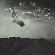 Society6 Prints http://bit.ly/2dIDg4w<br /> Redbubble prints: http://rdbl.co/2dbz9jT<br /> Curioos prints: http://bit.ly/2dP4EhT