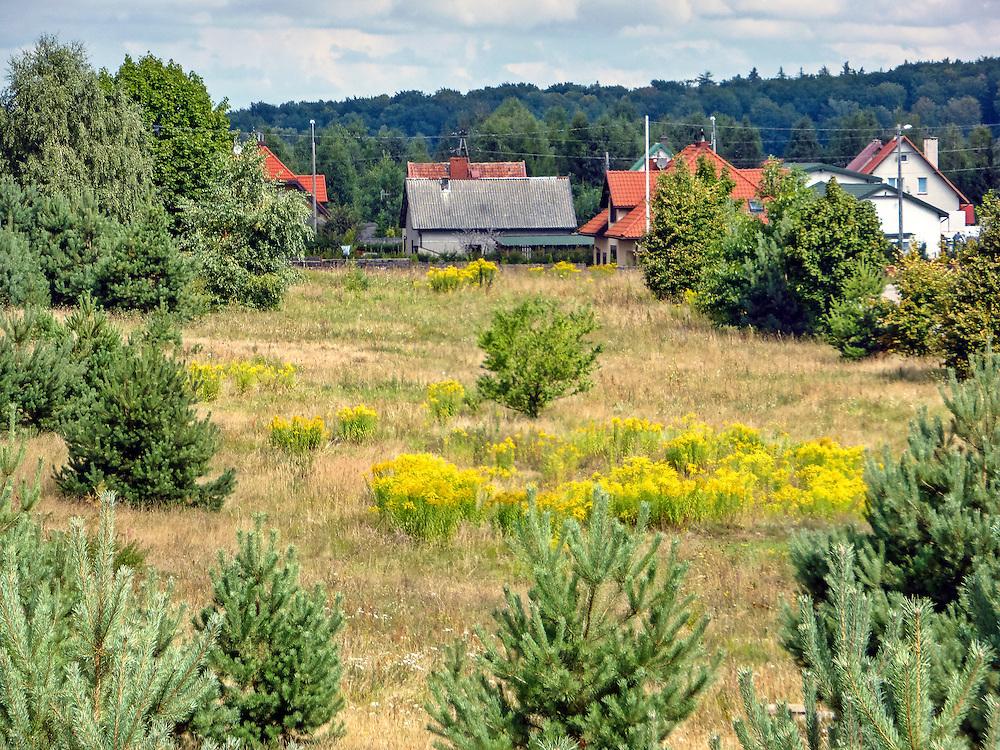 Miłomłyn 23.08.2013. Mazurski krajobraz