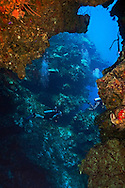Penny's Arch, Grand Cayman