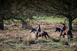© London News Pictures. 22/02/2014. London, UK.  Two horse riders at sunrise at Richmond Park in West London. The south of England is experiencing warm weather for the time of year and sunshine following weeks of rain and flooding.  Photo credit: Ben Cawthra/LNP