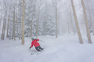 Andy Israel plays in the fresh powder on Aspen Mountain.