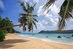 21.07.2015, Insel Praslin, SYC, auf den Seychellen, im Bild Strand und Palmen am Anse Boudin // Holiday on the Seychelles at the Insel Praslin, Seychelles on 2015/07/21. EXPA Pictures © 2015, PhotoCredit: EXPA/ Eibner-Pressefoto/ Schulz<br /> <br /> *****ATTENTION - OUT of GER*****